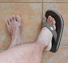 Foot Muscle-12.jpg