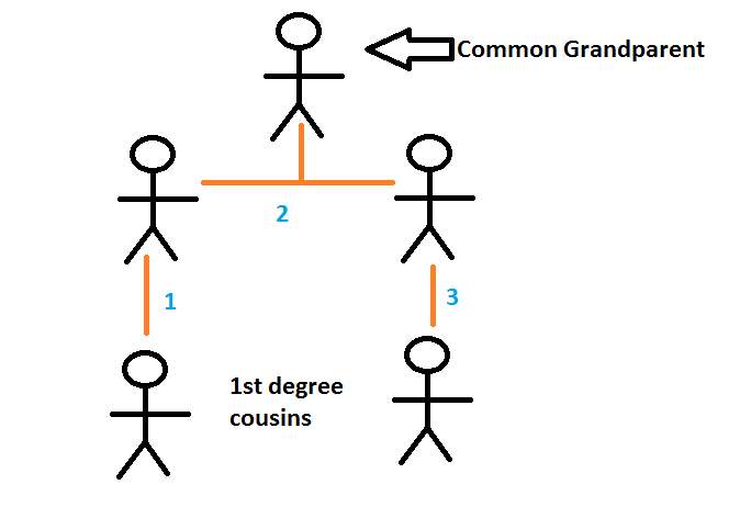 Why do Cousins Share 1/8 of genes?-1st-degree-cousins.png
