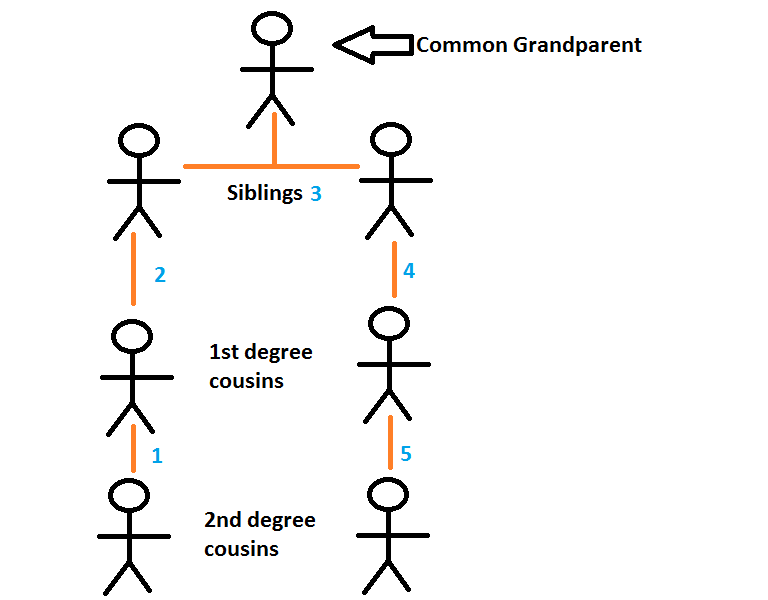 Why do Cousins Share 1/8 of genes?-2nd-degree-cousins.png