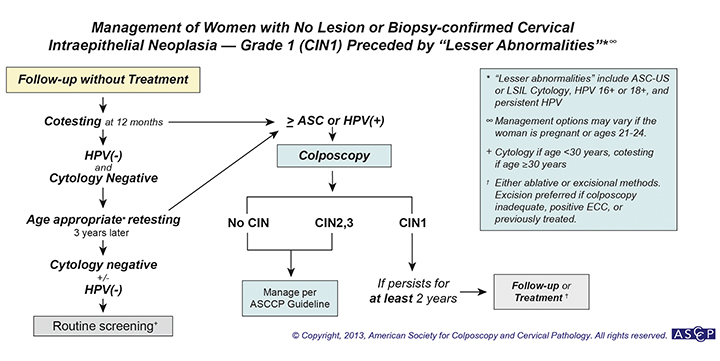 How to manage postmenopausal LSIL Pap smear?-cin1_preceded_lesser_abnorm.jpg