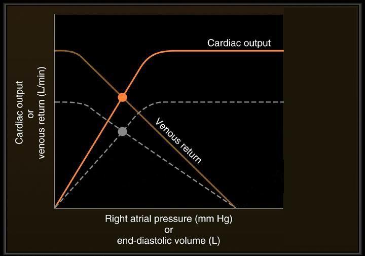 Cardiac output/venous return curves question-co.jpg
