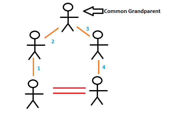 Why do Cousins Share 1/8 of genes?-consanguinity.png