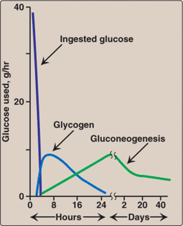 Test your knowledge #13! (Biochemistry)-da5c24ff10.png