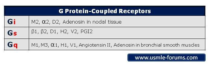 G Protein Coupled Receptors Table-greceptors.jpg