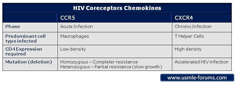 Ccr5 & cxcr4-hiv-coreceptors.jpg