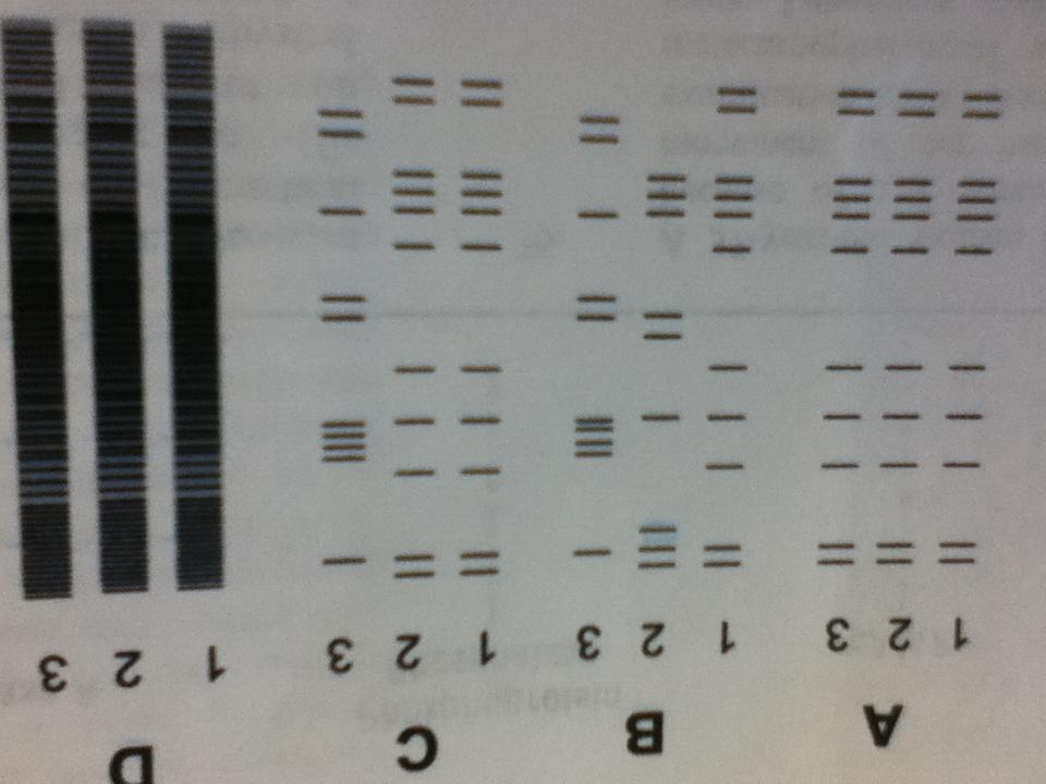 Polyacrylamide gels-img_2814-1-.jpg