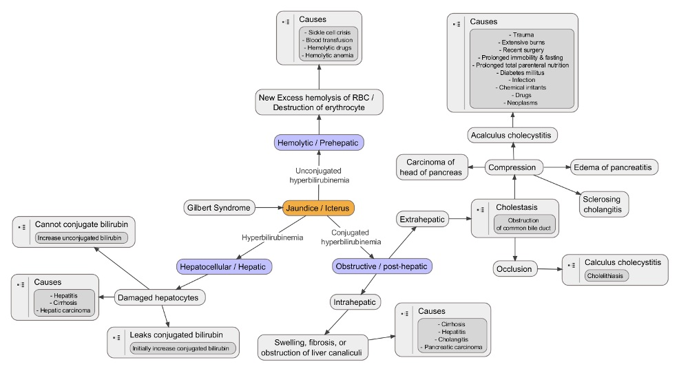 Jaundice and fever and gallstones!-jaundice-types-flowchart-2.jpg