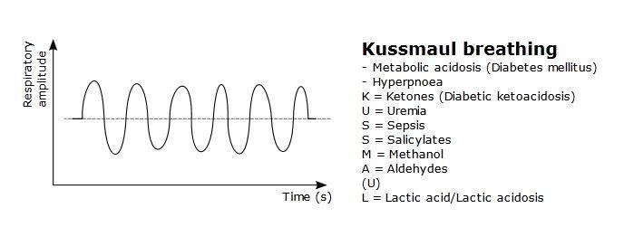 Breathing Patterns-kussmaul-respiration.jpg