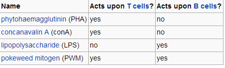 Q: Immunology 3-mitogen-promote-mitosis.png
