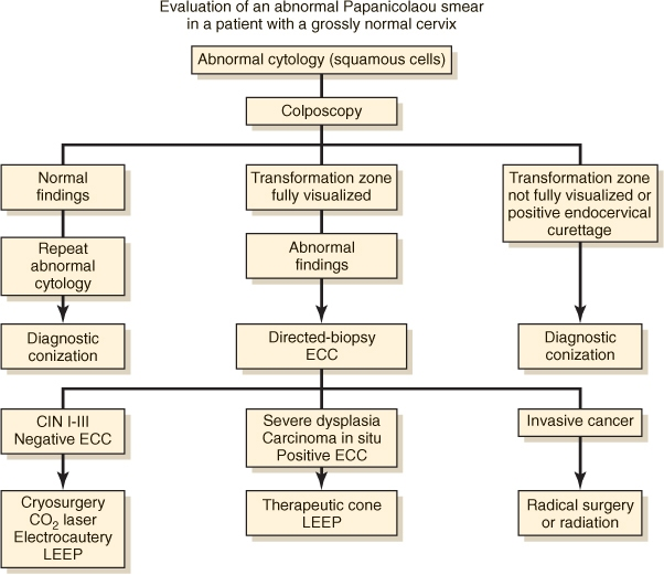 Algorithm for evaluation of patients with an abnormal Papanicolaou smear-papsmear-flow-chart.jpg
