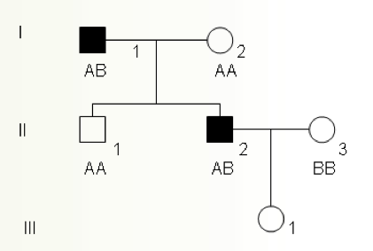 Genetic Pedigree Question-picture-5.png