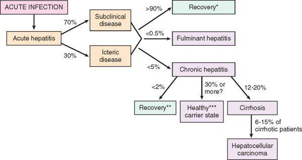 Likely outcome of Acute Hepatitis B Infection?-picture2.jpg