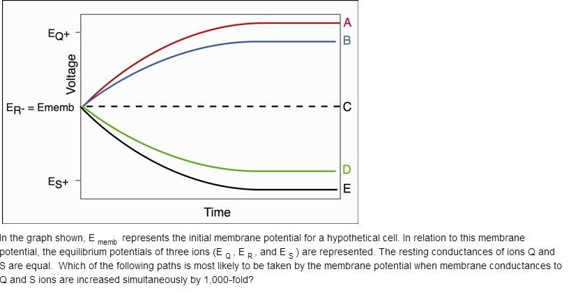 Question Membrane Potential - Physiology-question.jpg