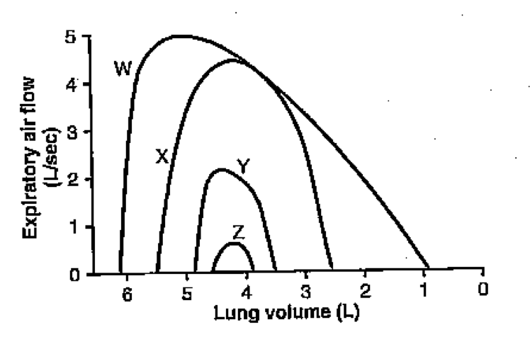 Which of the following can best explain the flow-volume curve?-screen-shot-2011-07-03-9.10.28-pm.png