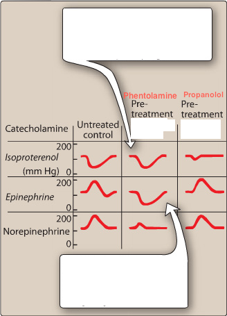 Norepinephrine and epinephrine question-usmle.png